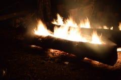Nocy tajgi jaskrawy ogień w ciemności obraz royalty free