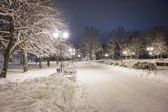 Nocy zimy krajobraz Obrazy Royalty Free