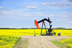Nodding oil pump in prairies Royalty Free Stock Photography