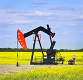 Nodding oil pump in prairies stock photography