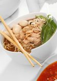 Noddle with meat Royalty Free Stock Photo