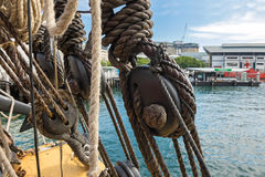 Node, triple deadeyes and thick ropes on the ship at Sydney Harb Royalty Free Stock Images