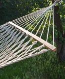 nodi del hammock Immagine Stock