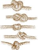 Nodi della corda Fotografia Stock