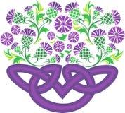 Nodo celtico sotto forma di canestro con il cardo selvatico dei fiori Fotografia Stock Libera da Diritti