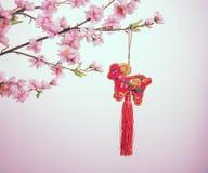 Nodo cinese della capra Fotografie Stock
