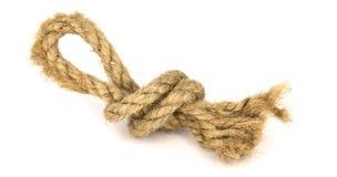 Nodo con un ciclo da una corda approssimativa spessa Fotografia Stock Libera da Diritti