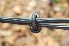 Nodo del cavo metallico Fotografie Stock Libere da Diritti