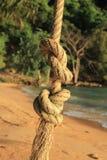Nodo della corda Immagini Stock