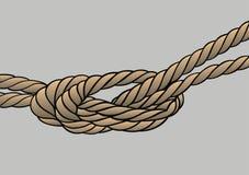 Nodo della corda isolato Fotografia Stock