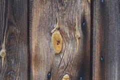 Nodo di legno Immagini Stock