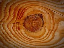 Nodo in legno fotografia stock libera da diritti