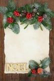 Noel Border floral decorativo Fotografia de Stock