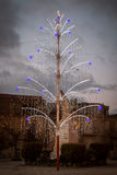 Noel drzewo Zdjęcia Royalty Free