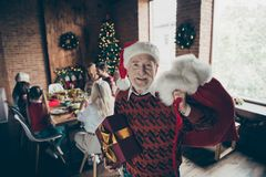 Noel gathering. Nice adorable cheerful grey-haired grandparent i stock photography
