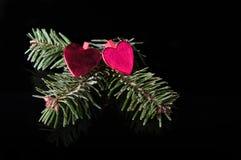 Noel ornament on black Stock Images