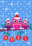Noel Owls Stock Photography