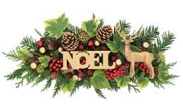 Noel Sign och Flora Decoration arkivfoton