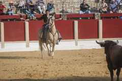 Noelia Mota, bullfighter on horseback spanish, Ubeda, Jaen, Spai Royalty Free Stock Photo