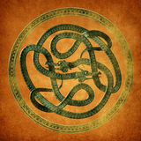 Noeud de Celtic de serpent Photographie stock libre de droits