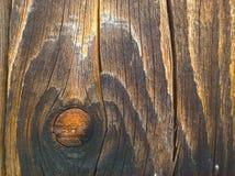 Noeud de conseil en bois Photo libre de droits