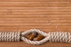 Noeud de corde avec des acornes Photo stock