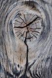 Noeud sur une partie d'arbre mort Photographie stock libre de droits
