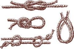 Noeuds Image libre de droits