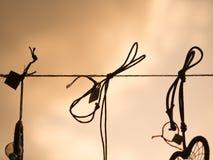 Noeuds de corde Images stock