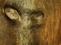 """Noeuds en bois de pin, montrant une description des """"yeux """" photo stock"""