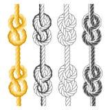 Noeuds et boucles de corde Photos libres de droits