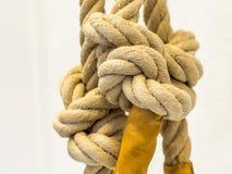 Noeuds sur une corde de chanvre - 2 Image libre de droits