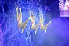 Noga taniec huśtawkowe akrobacje Fotografia Stock