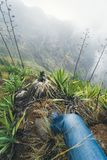 Noga zostaje na wypuscie nad mgłowa zielona dolina przerastająca z agawy Santo Antao wyspą w Cabo Verde podróżnik Obrazy Royalty Free