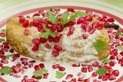 nogada мексиканца тарелки Чили Стоковая Фотография RF