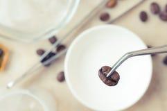 Noggrann undersökningkaffeböna royaltyfria foton