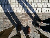 nogi Zdjęcie Stock