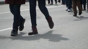 nogi zbiory