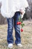 Nogi dziewczyny mienia róże Zdjęcia Stock