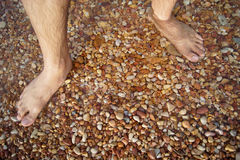 Nogi i cieki tonęli w dennym czerwień kamieniu Fotografia Stock