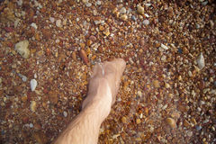 Nogi i cieki tonęli w dennym czerwień kamieniu Obrazy Royalty Free