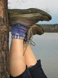 nogi spoczywa drzewa Fotografia Stock