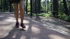 Nogi unrecognizable młoda kobieta jogging w parku zbiory wideo