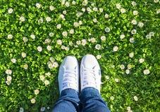 Nogi w cajgach i białych sportach zasznurowywają up sneakers buty na zieleni m Obrazy Stock