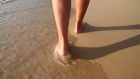 Nogi w morzu zbiory wideo