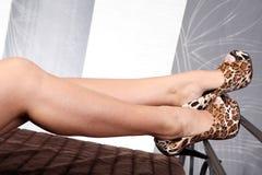 Nogi z butami od tygrysa wzoru Obrazy Royalty Free