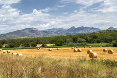 Noguera (Catalunya), country landscape Royalty Free Stock Photography