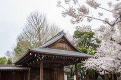 Nohgakudo et fleurs de cerisier entièrement déployées au tombeau de Yasukuni, chiyoda, Tokyo, Japon dans le springApril 7,2017 Photo stock