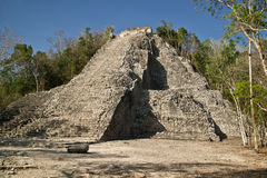 Nohoch Mul pyramid in Coba stock photo