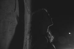 Noir   портрет привлекательной девушки брюнет Стоковое Изображение RF